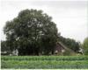 boerderij 't Leeuweriksveld